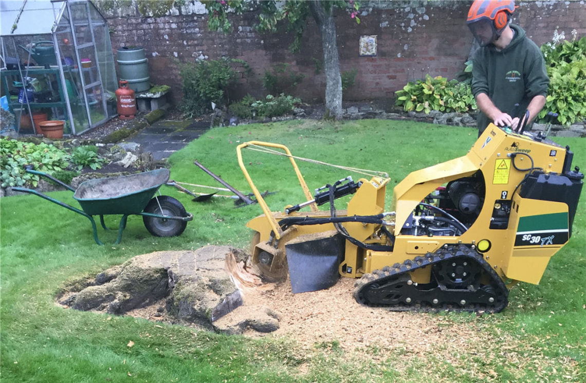 stump-removal-Manchester